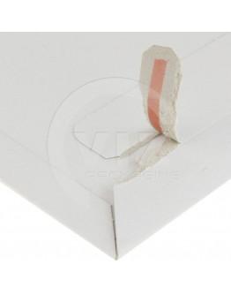 Cardboard mail envelopes 250x353mm 100pcs